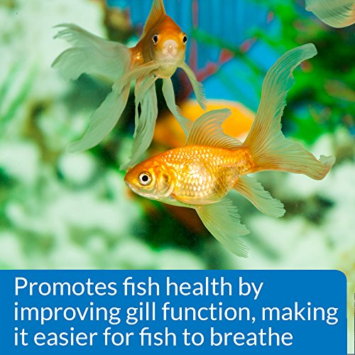 API Aquarium Salt, Promotes Fish Health and Disease Recovery in Freshwater Aquariums, Use When Changing Water, When…