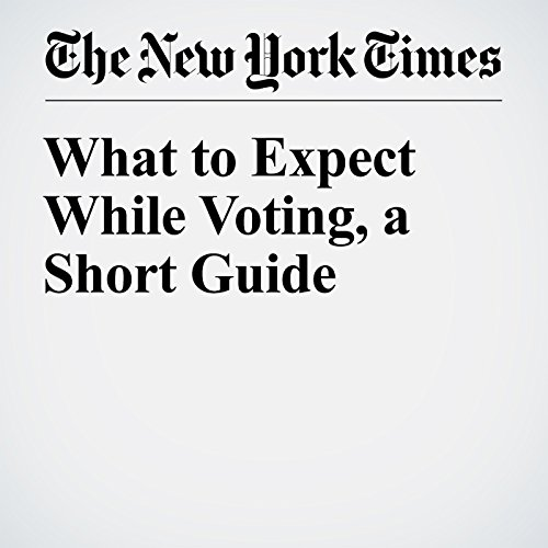 What to Expect While Voting, a Short Guide cover art