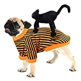 Halloween Pet Costume Dog Black Cat Costume Decorations Dogs Cats Puppy Doll Funny Cosplay Costumes Outfits Horror Clothes Clothing Christmas Festival Holiday Party Dress Up Apparel Accessories L