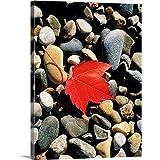 GREATBIGCANVAS Maple Leaf on Pebbles Canvas Wall Art Print, 30