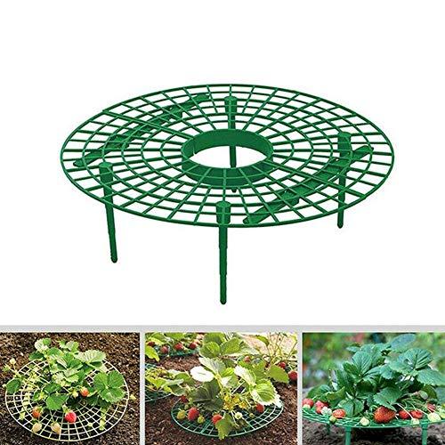 Preisvergleich Produktbild Hankyky Erdbeerreifer & Fruchtreifer / Einstellbare Stützen für Erdbeeren Salat und Tomaten / Schneckenschutz und Schutz vor Fäulnis und Schimmel