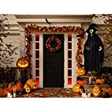 Haunted Hill Farm HHWITCH-8FLS Life-Size Animatronic Witch, Indoor/Outdoor Halloween Decoration, Color 7