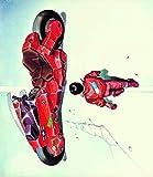 Akira 1988 Japan Motorcycle Art Poster - No Frame(16x24)