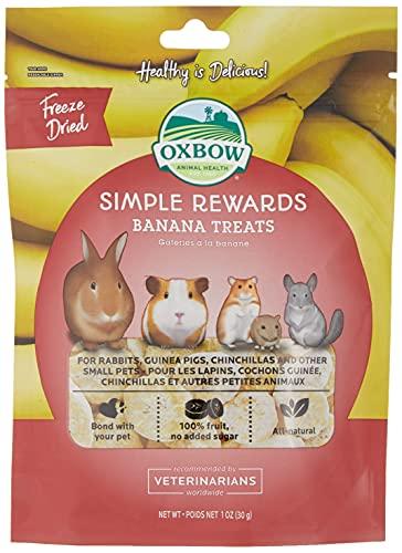 Oxbow SIMPLE REWARDS Treats - Rabbits Guinea Pigs Chinchillas BANANA 28.6 g