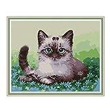 Kit de bordado de punto de cruz para adultos y niños, gatos de WOWDECOR animales de Navidad perros divertidos 11 quilates con sello DMC costura fácil principiantes Gatos