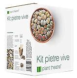 """Kit""""Pietre vive"""" Plant Theatre - kit regalo con semi di pietre vive. Un'unica confezione che raccoglie tutto il necessario per coltivare questa insolita varietà di piante"""