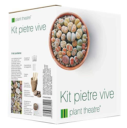 Kit'Pietre vive' Plant Theatre - kit regalo con semi di pietre vive. Un'unica confezione che raccoglie tutto il necessario per coltivare questa insolita varietà di piante