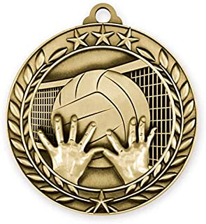 Express Medals Volleyball Gold 1st Place Medal with Neck Ribbon Award WAM9