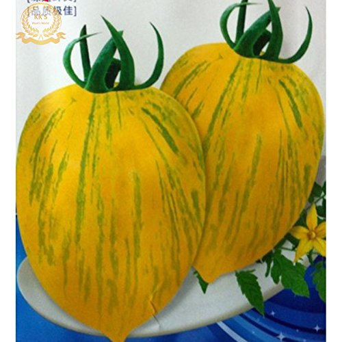 Rare Heirloom 'Tiger Skin' Big Yellow Tomato Hybrid Seeds, paquet d'origine 200 graines, comestibles savoureux légumes de fruits KK193