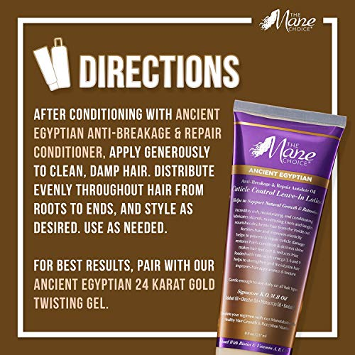 The Mane Choice Ancient Egyptian Anti-Breakage and Repair Antidote Leave-In Lotion - Conditions and Moisturizes Your Hair (8 Ounces/237 Milliliters)