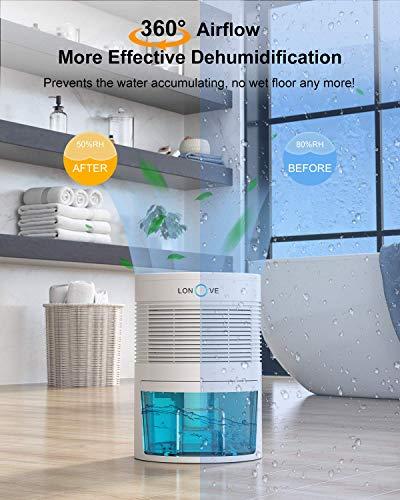 LONOVE Dehumidifier - 31oz(900ml) Portable and Ultra Quiet Small Dehumidifiers with Auto Shut-off, 2200 Cubic Feet Compact Mini Air Dehumidifier for Home Bedroom Bathroom Basements Closet RV Room