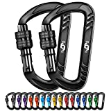 Rhino Produxs 2PCS of 12kN (2697 lbs) Heavy Duty Lightweight Locking Carabiner Clips - Excellent for Securing Pets - Outdoor, Camping, Hiking, Hammock, Dog Leash Harness - Keychains, Water Bottle