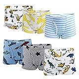 Flyish Boxer Garçon,Vêtements Garçon Boxers,Lot de 6 sous-vêtements de Garçon Boxer Slip en Coton Culotte Pantalon 3-10 Ans