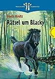 Rätsel um Blacky (Thienemanns Buchpiraten)