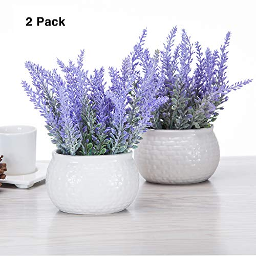 chuangxindaye Artificial Mini Potted Flowers Plant Lavender for Home Decor Party Wedding Garden Office Patio Decoration (Ceramics 2set)