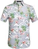 SSLR Men's Flamingos Casual Short Sleeve Aloha Hawaiian Shirt (X-Large, Light Grey)