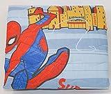 Caleffi Tagesdecke, gesteppt, Halbjahreszeiten, original Disney Art. Spider-Man New York 77859 aus Reiner Baumwolle cm. 215x265