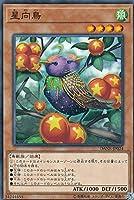 遊戯王 DANE-JP024 星向鳥 (日本語版 ノーマル) ダーク・ネオストーム