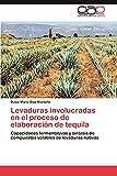 Levaduras Involucradas En El Proceso de Elaboracion de Tequila: Capacidades fermentativas y síntesis de compuestos volátiles de levaduras nativas
