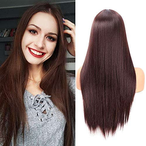 fani Fani 22 Inch Long Straight Dark Brown Wigs for Women and Ladies Natural Hairline Middle Part Synthetic Full Wig (4#)