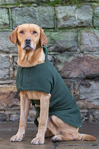 Dog & Field Manteau éponge Double épaisseur, Vert Olive, XXL