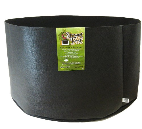 Smart Pots 65-Gallon Smart Pot Soft-Sided Container, Black