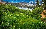 Puzzle 500 Piezas Vista Sobre El Parque Nacional De Yosemite Classic Puzzle 3D Puzzle Diy Kit Juguete De Madera Decoracin nica Para El Hogar