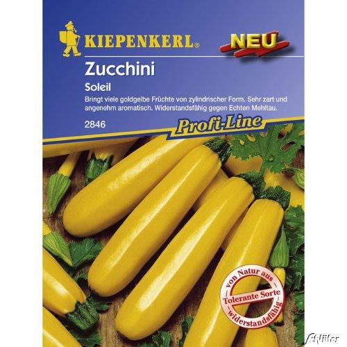 Gelbe Zucchini 'Soleil' F1