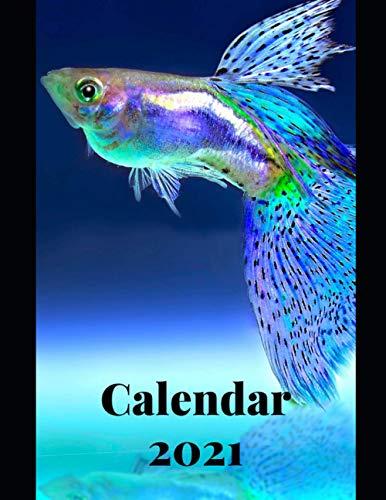 Fish Animals Calendar 2021: Weekly Planer Logbook Wildlife Diary Gift Todo Memory Book Budget Planner Hobby | Men, Woman, Girls & Boys | 8.5