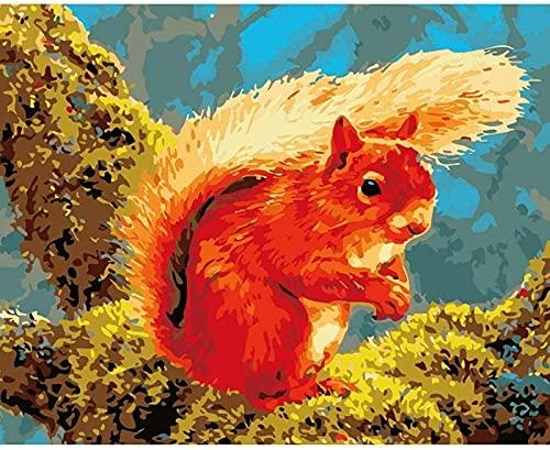 In base al numero di pittura digitale / kit pittura a olio fai da te / kit tela scoiattolo fiammeggiante, radiografia e pennello, pittura acrilica domestica (40x50 cm senza cornice)