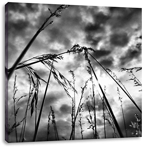 Sombere gras van de regenCanvas Foto Plein | Maat: 40x40 cm | Wanddecoraties | Kunstdruk | Volledig gemonteerd