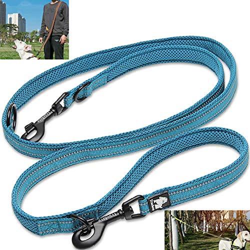Tineer Pet einstellbar 2 Hunde Hände frei Nylon Multi-funktionale reflektierende Hundeleine für Walking Training Hundeleinen Leashes (S, Blau)