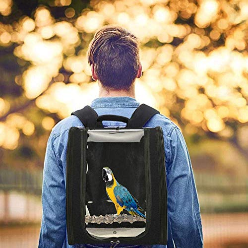 XBSLJ Vogelkäfige Parrot Bird Carrier Rucksack Travel Outerdoor Bird Travel Carrier Transport Barsch für große mittlere kleine Vögel Käfig Atmungsaktives Reisen Wandern