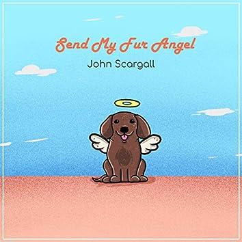Send My Fur Angel