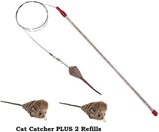 Best bird on a wire cat toy Reviews