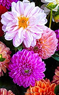 """Notebook: dahlia blossom bloom flowers nature flora 5"""" x 8"""" 150 Ruled Pages"""