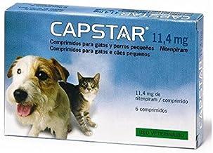 Amazon.es: desparasitacion gatos pastillas