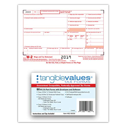 W-2 Tax Forms 2019 - Tangible Values 6-Part Laser Tax Form Kit with Envelopes - Includes TFP Software, 50 Pack Photo #7