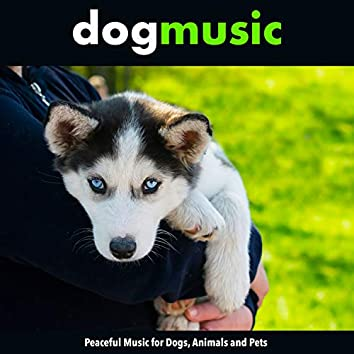 Dog Music: Peaceful Music for Dogs, Animals and Pets