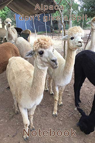 Alpaca - I don't give a Spit Not...
