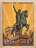 AZSTEEL Montpellier Poster