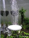 JARDLI Pollen Glas CO2 Diffusor mit U Pipe für Aquarium Gepflanzt Tank (Φ40mm)