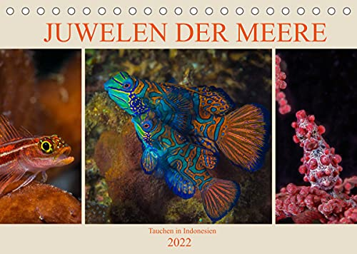 Juwelen der Meere (Tischkalender 2022 DIN A5 quer)