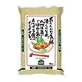 【精米】佐賀県産 白米 ひのひかり 5kg 令和2年産
