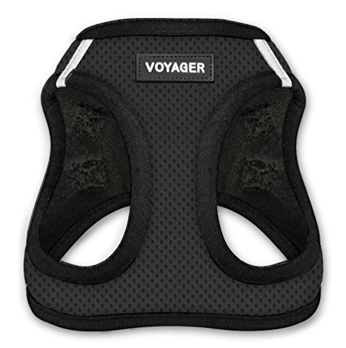Voyager Step-In Air Dog Harness - All Weather Mesh, Step In Vest Harness for Small and Medium Dogs by Best Pet Supplies - Black Base, Small (Chest: 14.5' - 17')