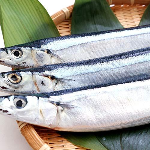 サンマ 北海道産 獲れたて 塩さんま 熟成された天然の秋刀魚 さんま 2尾