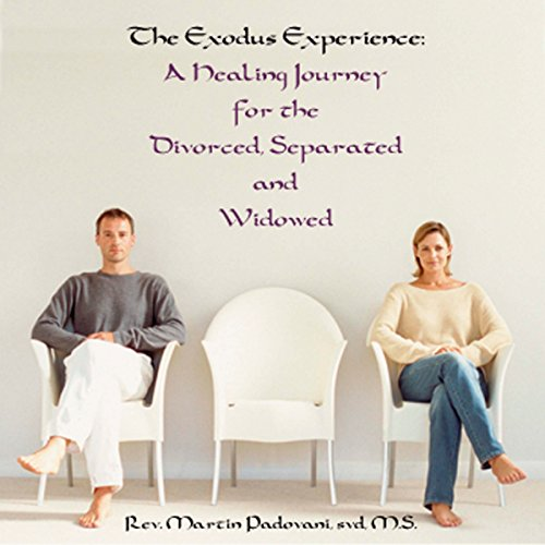 The Exodus Experience audiobook cover art