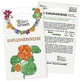 Kapuzinerkresse Samen: Premium Kapuziner Kresse Pflanzen Samen für ca. 6x blühende Kapuzinerkresse Pflanze – Tropaeolum Saatgut für Essbare Blumen – Blumen essbar – Essbare Blüten Samen von OwnGrown