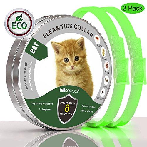 Solacium Prevención de pulgas y garrapatas para Gatos, Collar de Gato para Todos los Pesos, 8 Meses de protección (13 Pulgadas), Verde, 13IN 2 Pack