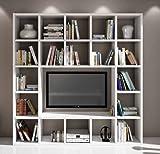 Legno&Design Wohnwand TV-Bücherregal Wohnzimmer weiß Esche 20 Elemente